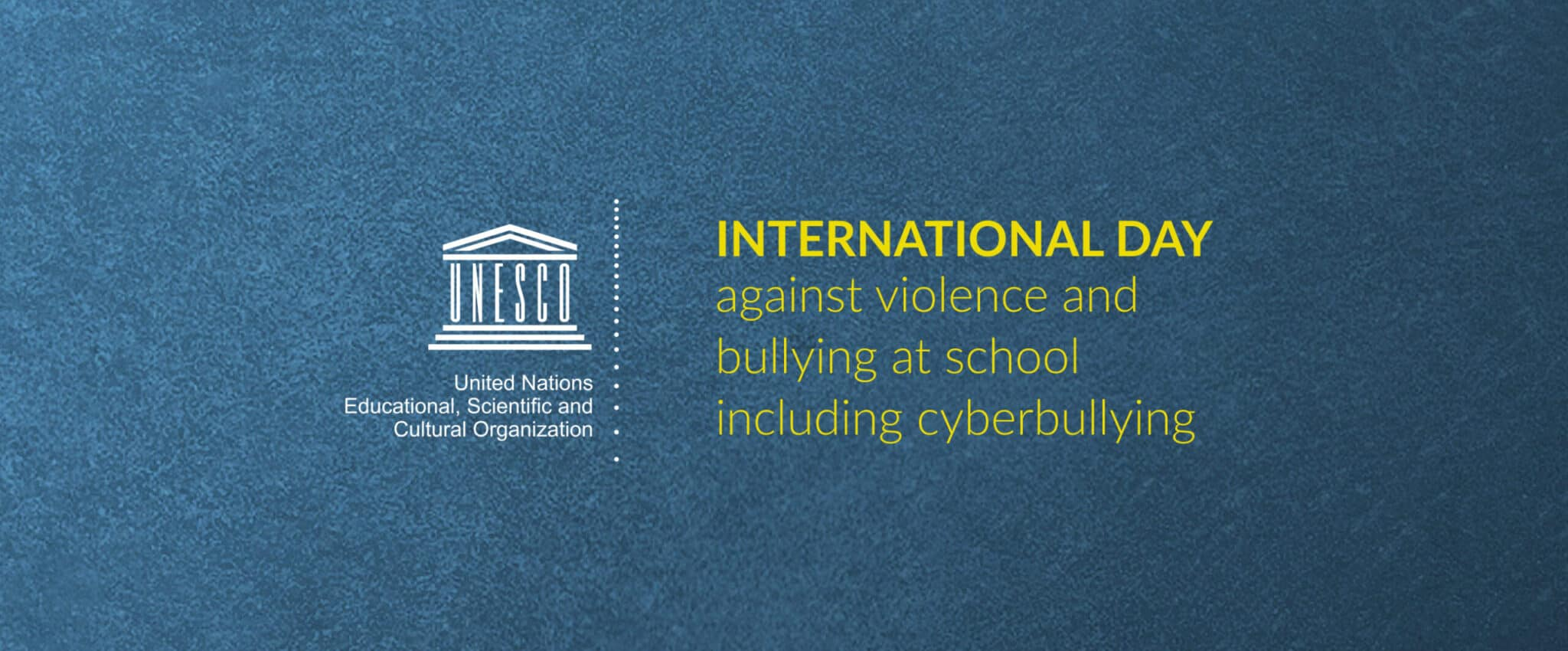 Dr Milosevic testifying at the UN and Irish Parliament on cyberbullying